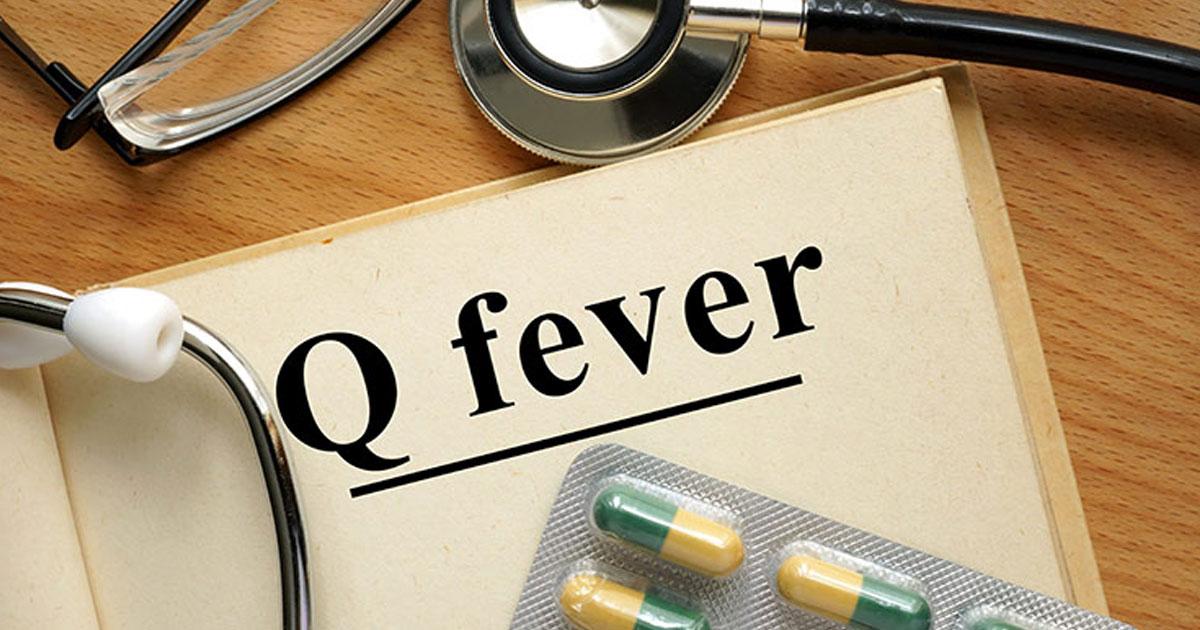 Q FEVER CLINIC - Bulk Billed Health Central Doctors
